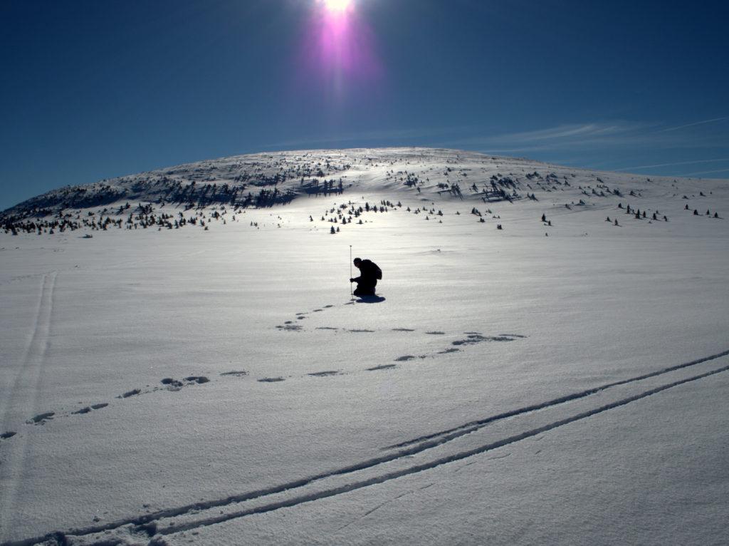 badania śnieżne